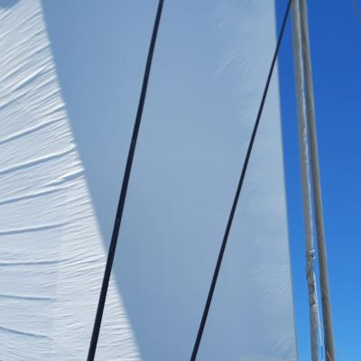 A sunny and windy day, perfect for sailing