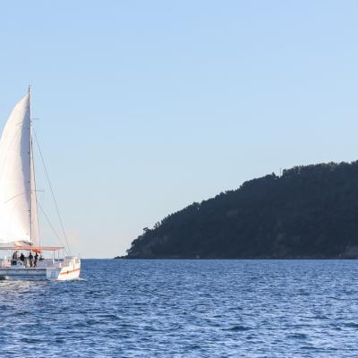 Taino Day Charter 21m under sails