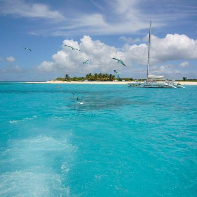 Day charter catamaran in Caribbean