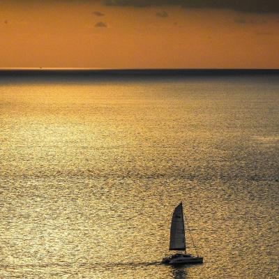 Léopard catamarans under sails