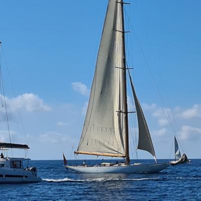 Monocoque ou catamaran?