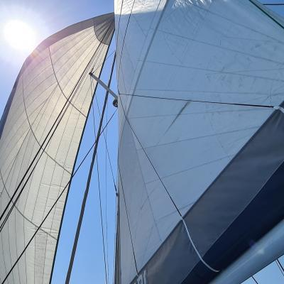 Sails up for this last Sunday of August