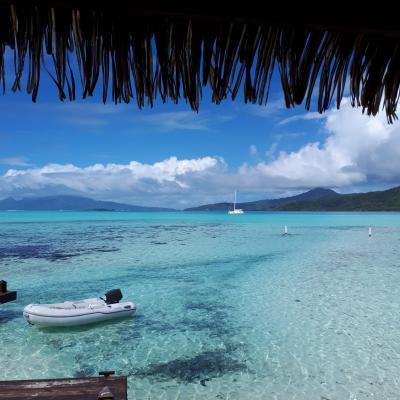 Tahiti is just a paradise