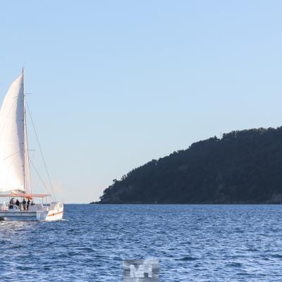 Taino day charter 21m