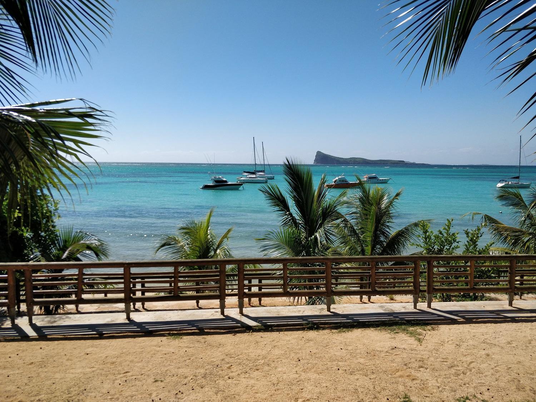 Bain boeuf public beach cap malheureux mauritius