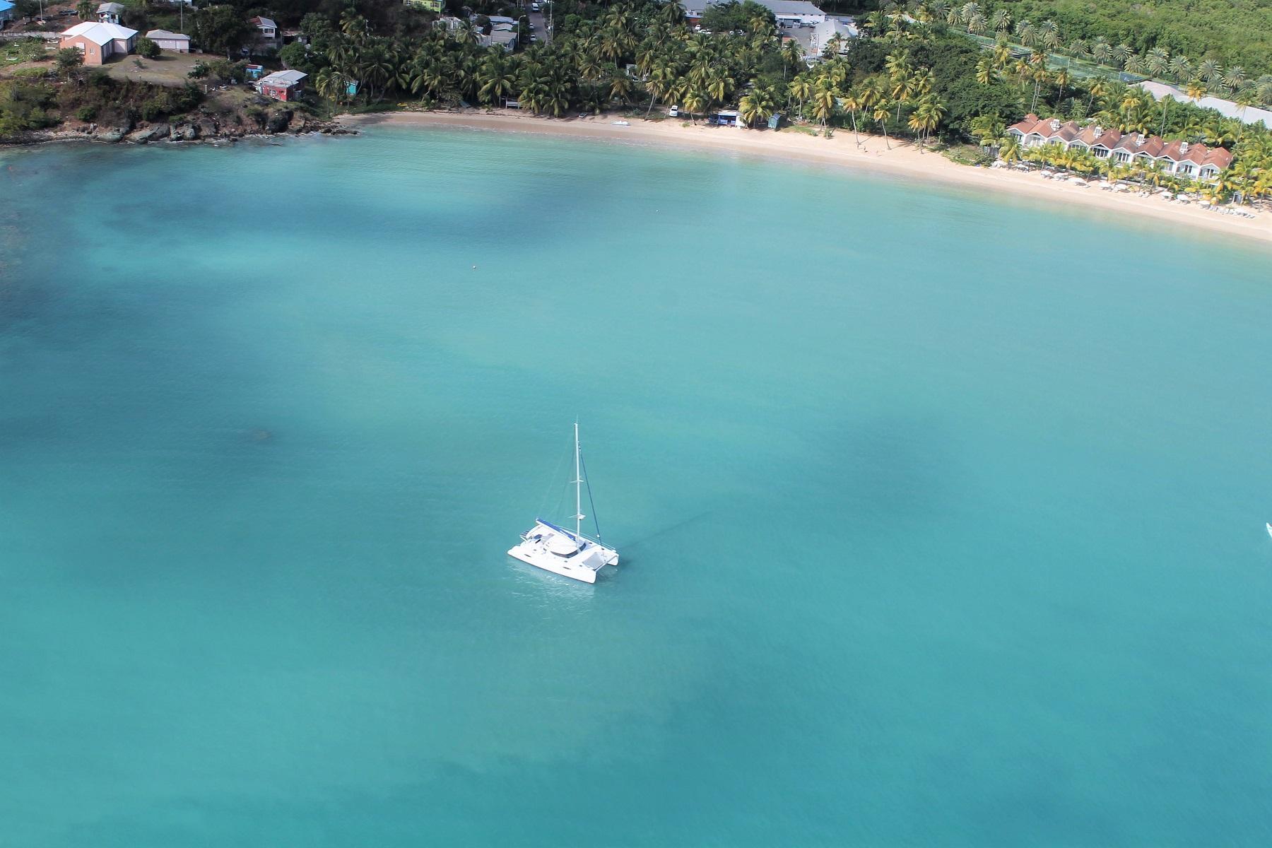 Caribbean barbade