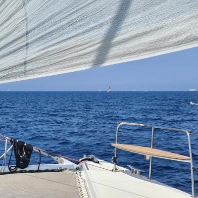 Catamaran or monohull