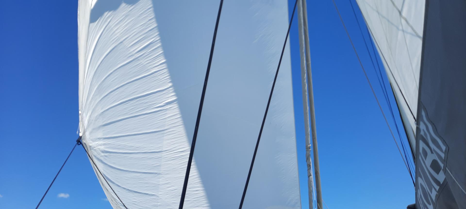 Catana 50 sailing