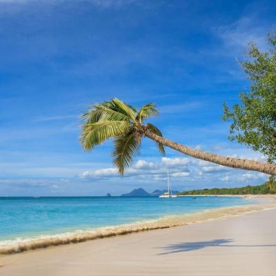 Beautiful beach in Martinique with white sand