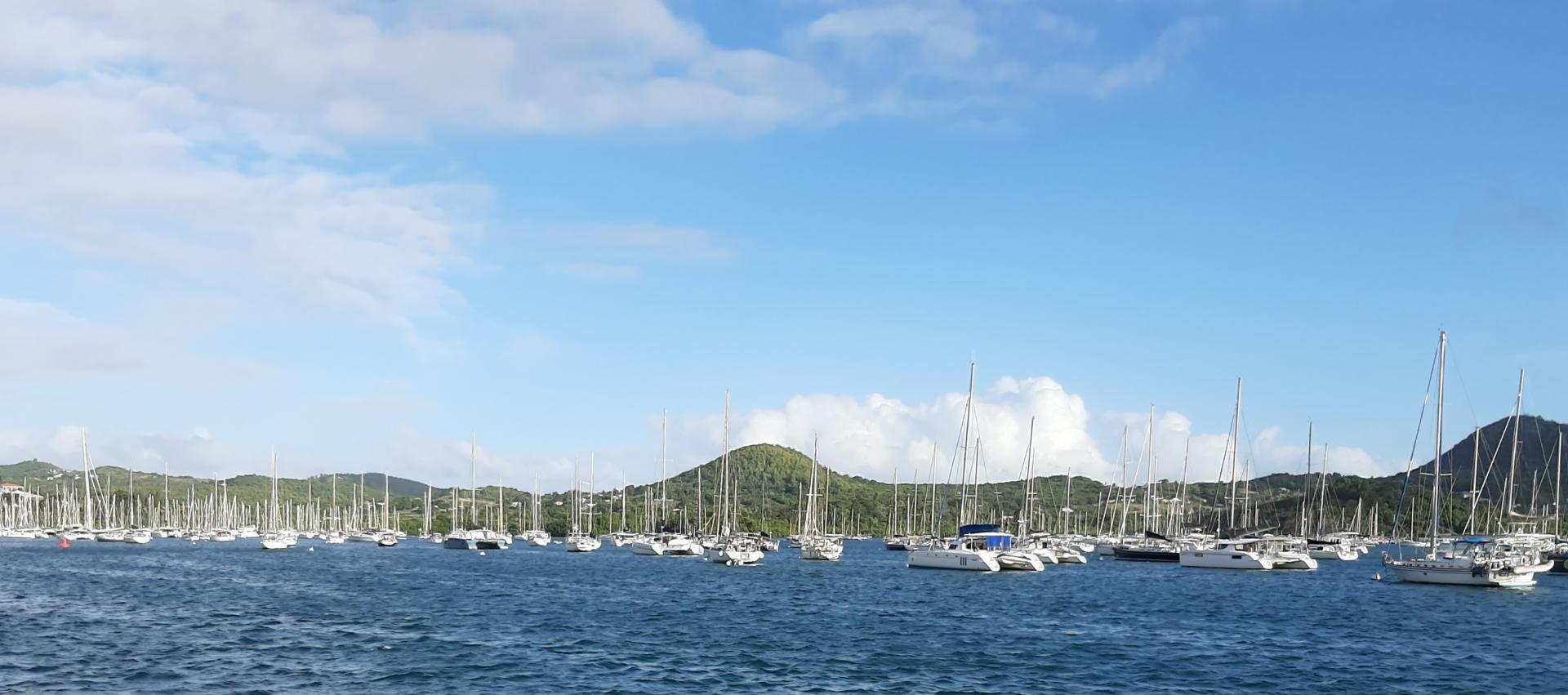 Martinique marin