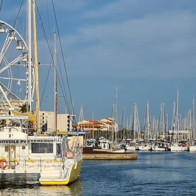 Port de Canet en Roussillon cet été