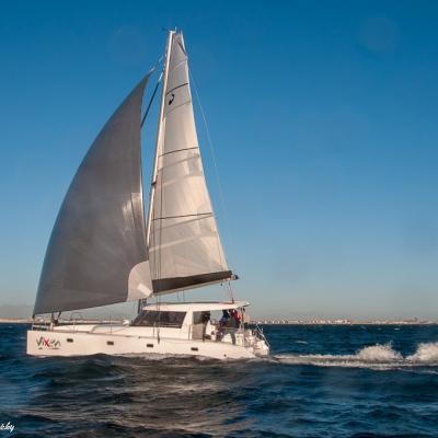Scape 40′ Adventurer Racer Cruiser