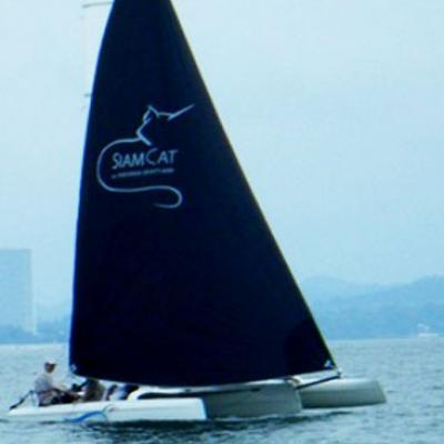 Siam Cat TC627