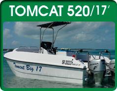 Tomcat 520