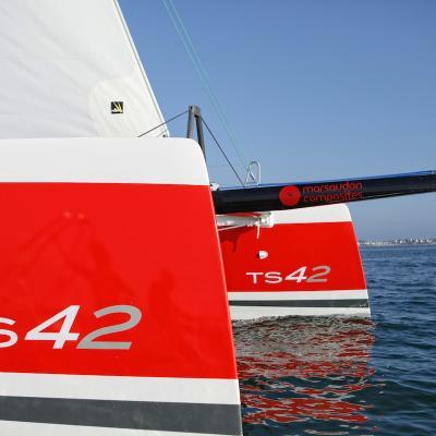 TS 42